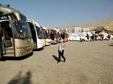 Massvis med bussar